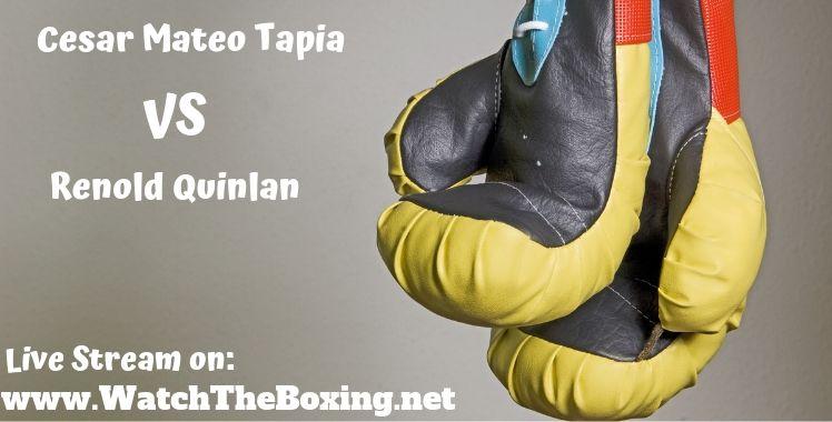 Cesar Mateo Tapia Vs Renold Quinlan Live Stream